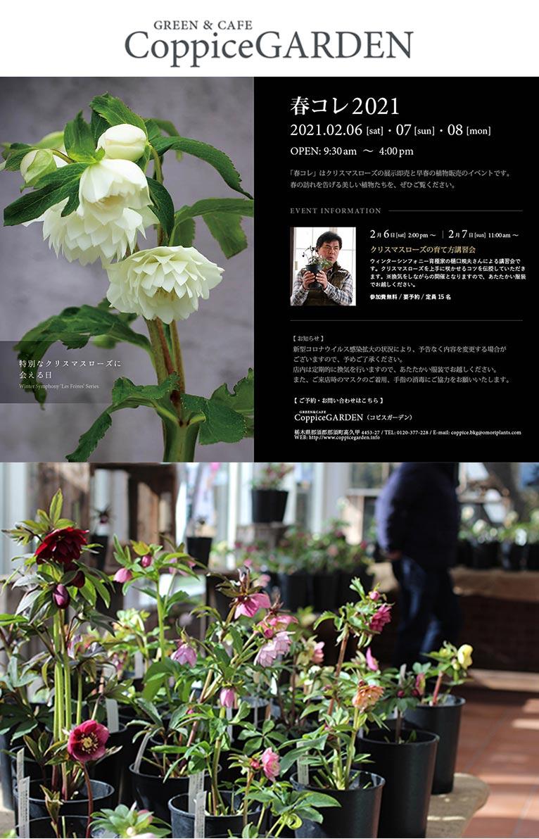 2021年2月6~8日『春コレ2021』 コピスガーデン
