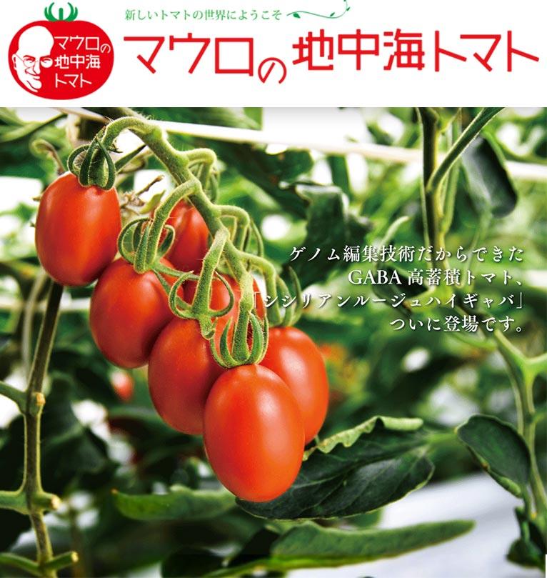 ~2021年3月31日 GABA高蓄積トマトの栽培モニター募集 パイオニアエコサイエンス株式会社