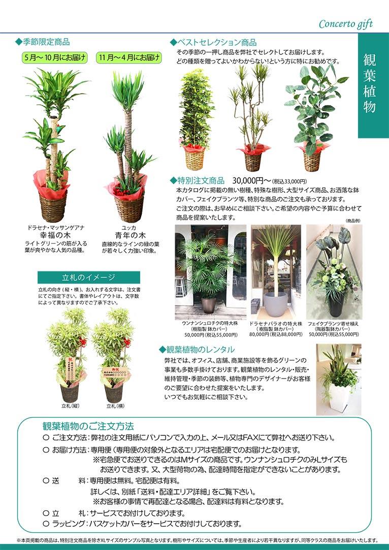 【新カタログ】祝い花を贈りませんか? 株式会社コンチェルト ガーデン事業