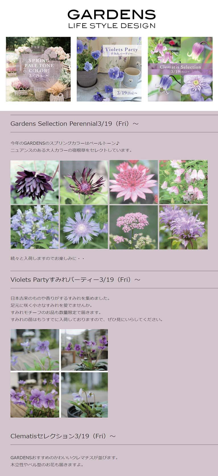 2021年3月19日~ GARDENSイベント 『Gardens Sellection Perennial』『Violets Partyすみれパーティー』『Clematisセレクション』