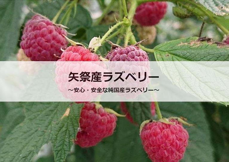 矢祭園芸 紹介ページ