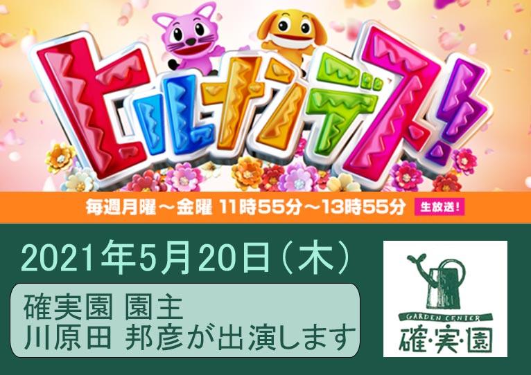 2021年5月20日11時55分~13時55分 日本テレビ系列「ヒルナンデス!」に確実園 園主 川原田 邦彦さんが出演されます!