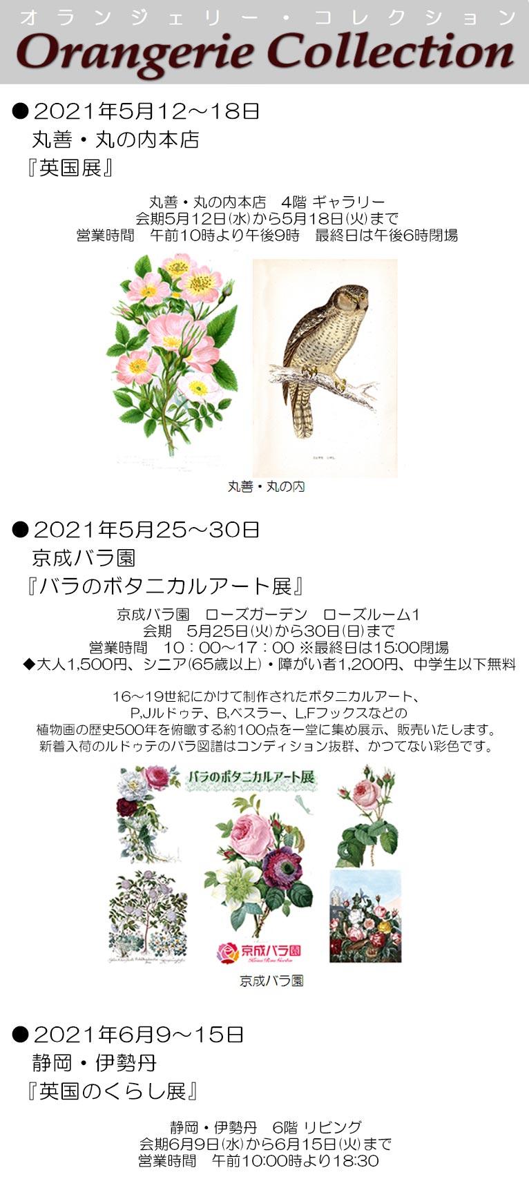 2021年5月12~18日丸善・丸の内本店『英国展』 5月25~30日京成バラ園『バラのボタニカルアート展』 6月9~15日静岡・伊勢丹『英国のくらし展』 植物画を展示販売します! オランジェリー・コレクション