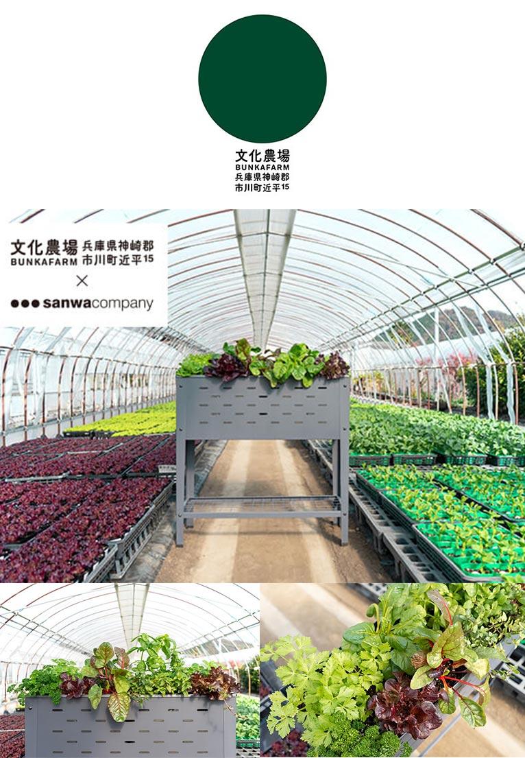 家庭菜園キット・文化の土・家庭菜園用プランター《ベジコンテナ》 文化農場オンラインショップ