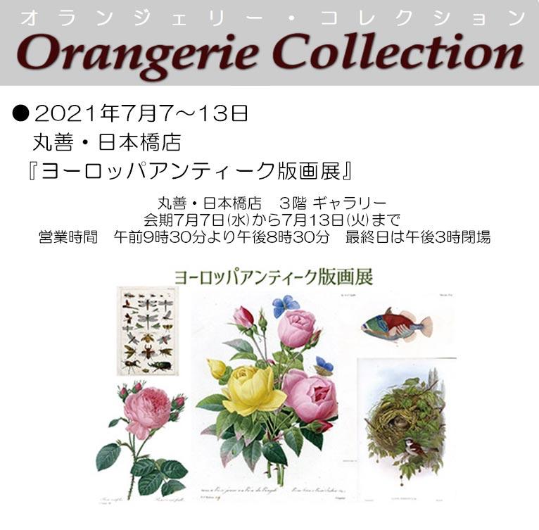 2021年7月7~13日丸善・日本橋店『ヨーロッパアンティーク版画展』
