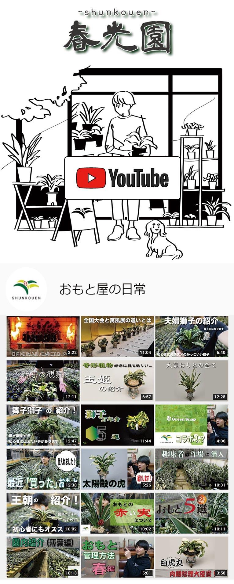 YouTubeを始めました!『おもと屋の日常』春光園
