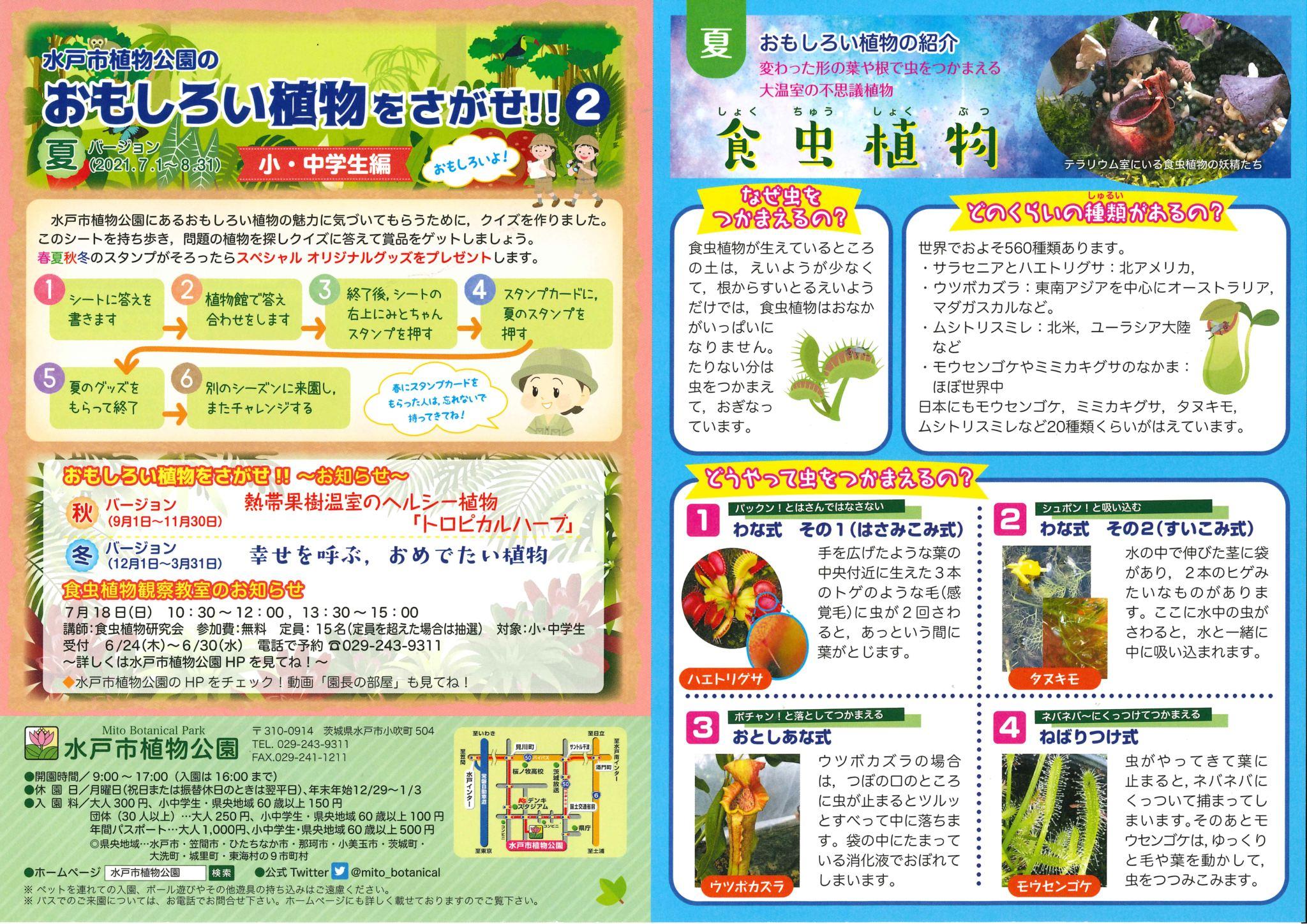 2021年7月1日 『おもしろい植物をさがせ!!』 水戸市植物公園