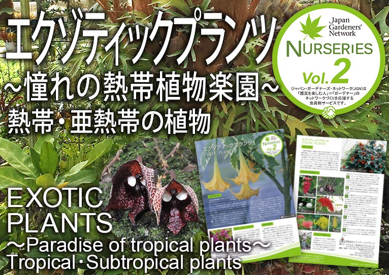 【JGN ナーセリーズ】エクゾティックプランツ 尾崎 忠さんナーセリーズ~憧れの熱帯植物楽園~