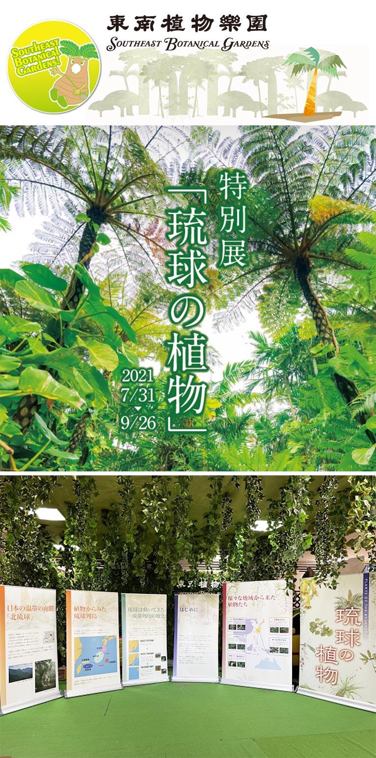 【沖縄・奄美が世界遺産ユネスコ登録に決定】2021年7月31日~9月26日特別展『琉球の植物』東南植物楽園