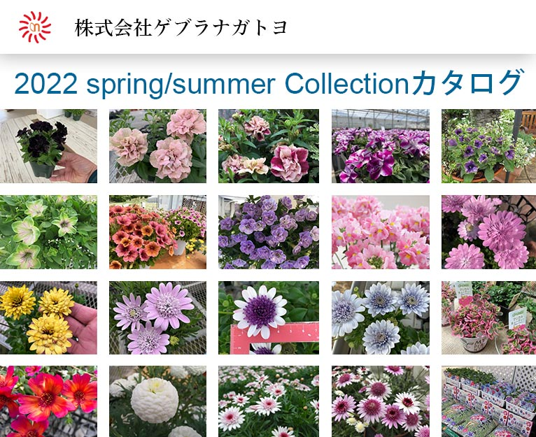 2022 spring/summer Collectionカタログが出来ました! 株式会社ゲブラナガトヨ