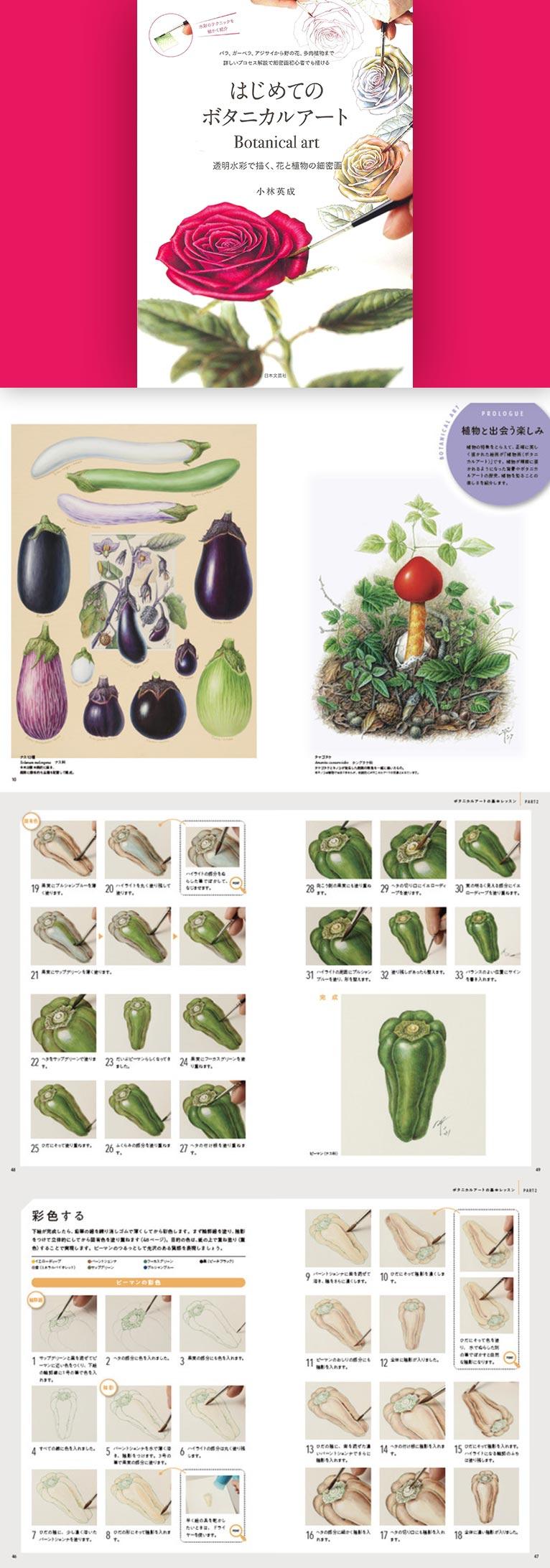 【予約受付中!2021年9月17日発売】透明水彩で描く、花と植物の細密画『はじめてのボタニカルアート』 JGNメンバー・植物画家 小林 英成著
