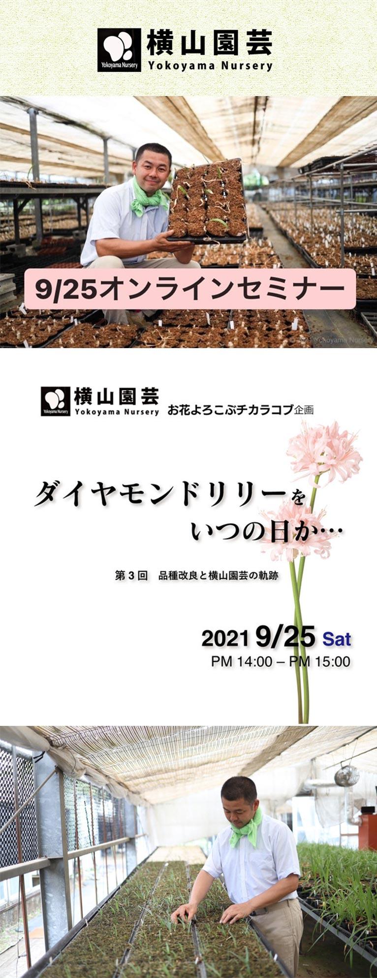 2021年9月25日オンラインセミナー横山園芸お花よろこぶチカラコブ企画ダイヤモンドリリーをいつの日か『第3回 品種改良と横山園芸の軌跡』