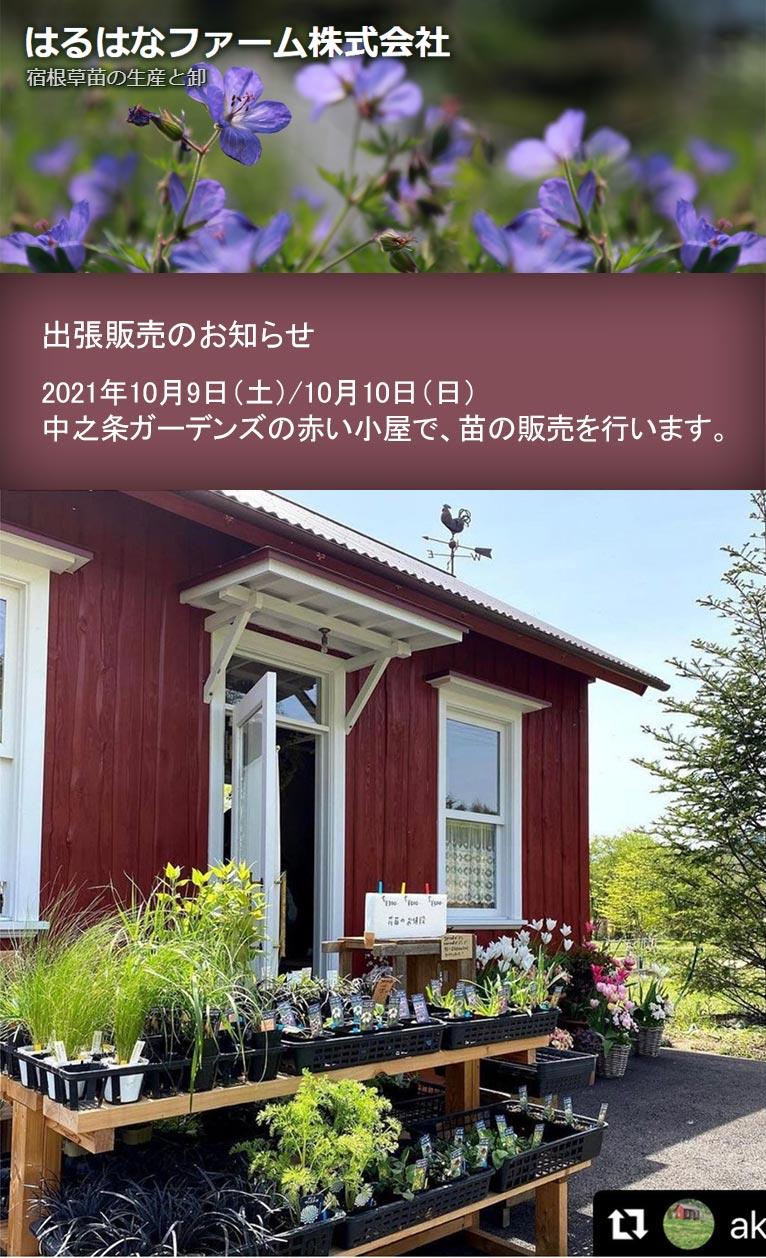 2021年10月9・10日はるはなファームは中之条ガーデンズの赤い小屋で苗の販売を行います。